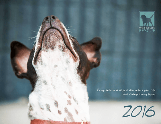 Get our beautiful 2016 WDR Calendar!!