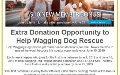 Ten Extra Dollars for Wagging Dog Rescue!