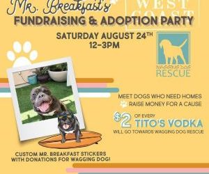 Mr. Breakfast's Fundraising & Adoption Party!