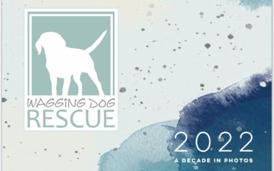 2022 Calendar Fundraiser